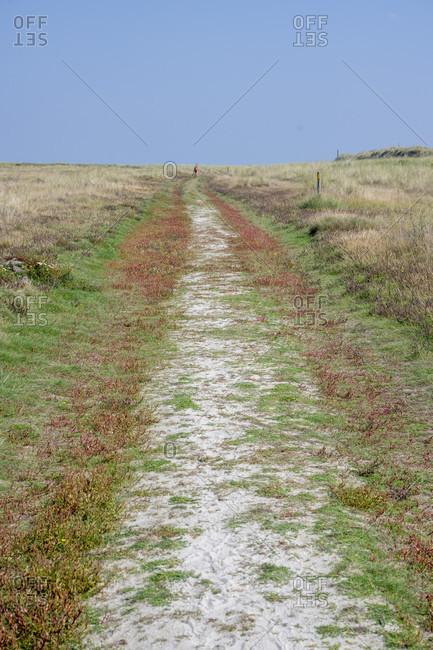 Germany, Lower Saxony, East Frisia, Juist, dirt road at Kalfamer.