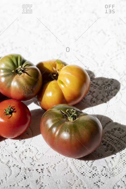 Harvested Tomatoes on White Lace Tablecloth