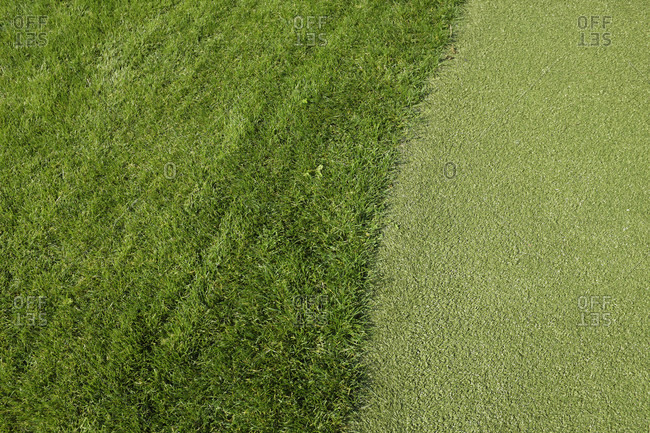 Germany, Hamburg, Hafen City, Impressions, lawn with artificial turf