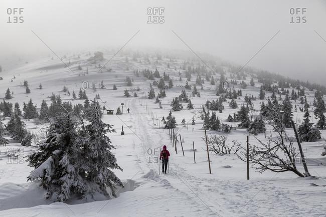 Europe, Poland, Lower Silesia, Giant Mountains
