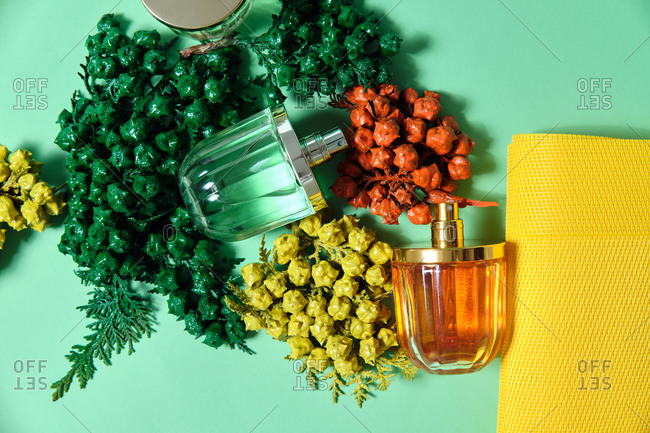 Top view of shiny glass bottles of handmade luxury perfume arranged on table with sprigs of thuja
