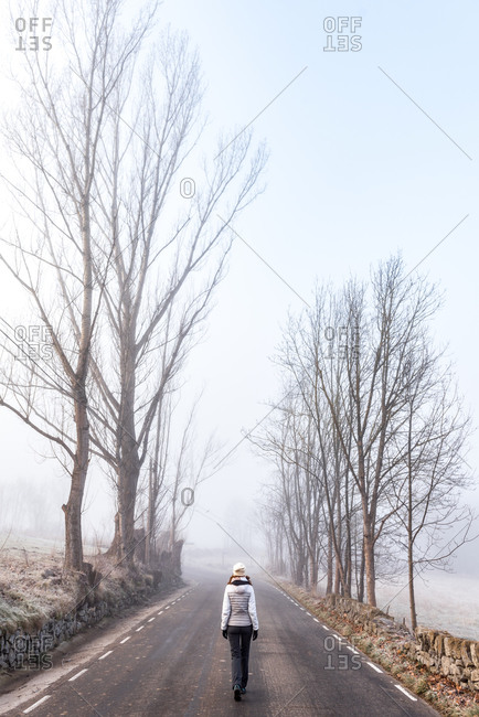 Back view of anonymous female hiker in warm clothes walking on empty asphalt road among leafless trees in cold misty day in countryside in Bellver de Cerdaña , Catalunya