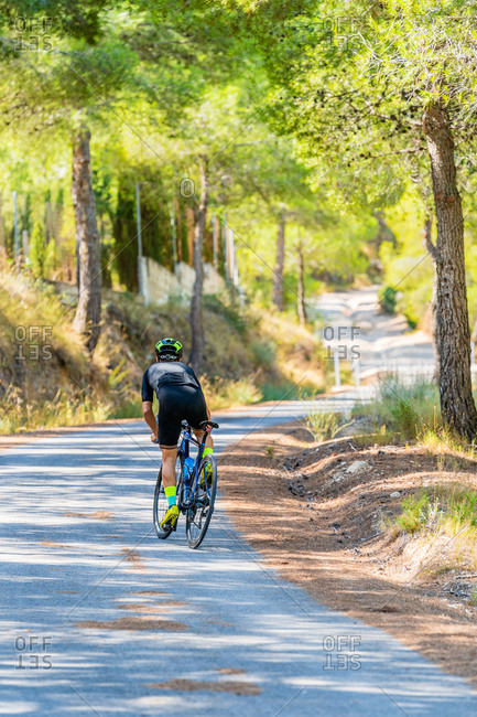 Full body back view of fit male cyclist in sportswear and helmet riding bike on narrow curved road leading through green forest in summer day