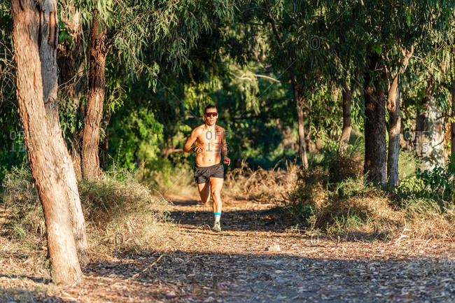 Full body of serious active sportsman in sunglasses running fast on path while training in green forest in summer day
