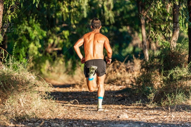 Back view of full body of serious active sportsman in sunglasses running fast on path while training in green forest in summer day