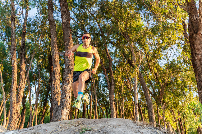 Low angle full body of serious active sportsman in sunglasses running fast and jumping over path while training in green forest in summer day