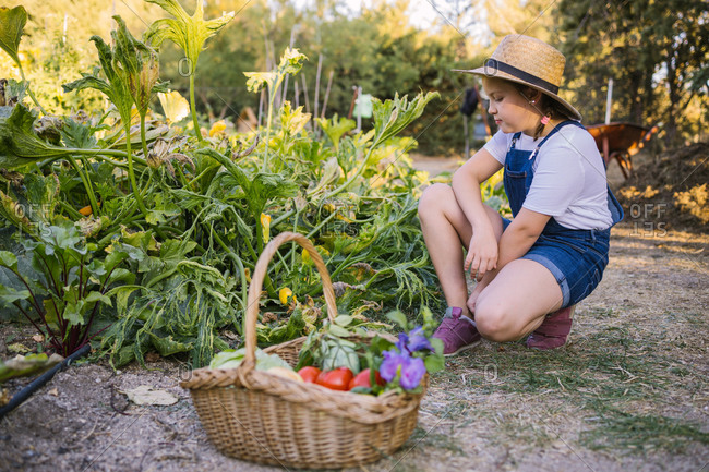 Wicker basket full of various ripe vegetables and fragrant flowers placed in garden on blurred background of girl in straw hat
