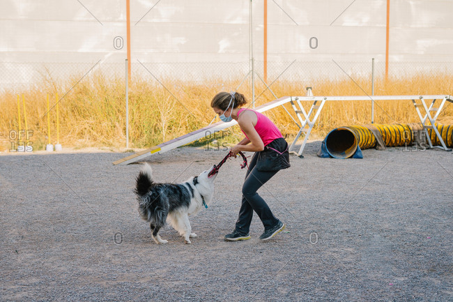 Border Collie dog pulling rope from hand of female instructor during training on playground with agility equipment