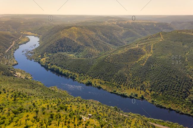 Aerial view of the Tagus river flowing in between the forst hills, Belver, Portugal.