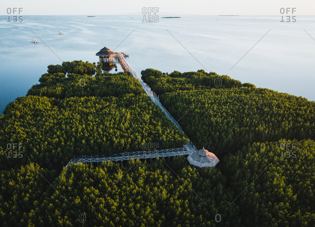 Aerial view of jetty in the jungle along the coast, Bohol, the Philippines.