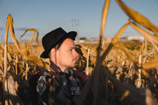 Male person wearing hat in a corn field, rural scene