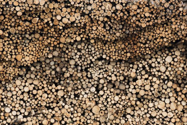 Full frame shot of woodpile