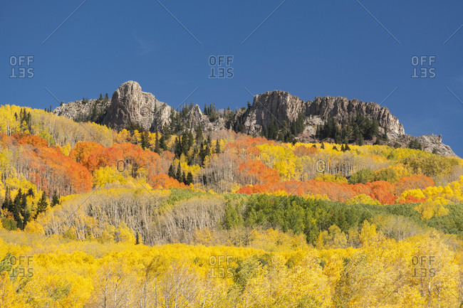 Scenic view of landscape against clear blue sky during autumn