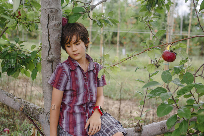 Portrait of a beautiful boy sitting thoughtfully in an apple orchard