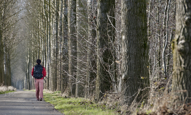 Woman walking along alley in the Netherlands