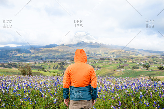 Young man standing in front of Cotopaxi mountain in los Andes Ecuador