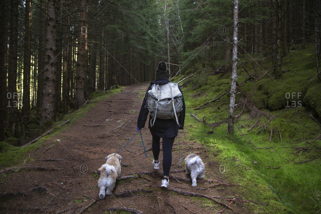 A girl walking on a path in the woods with her two dogs