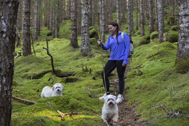 A young woman standing on a mossy wooded trail with her dogs in Norway