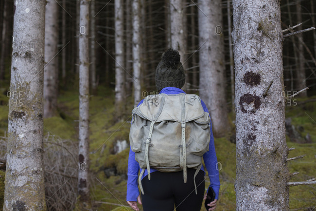 An anonymous hiker walking into the deep dark forest