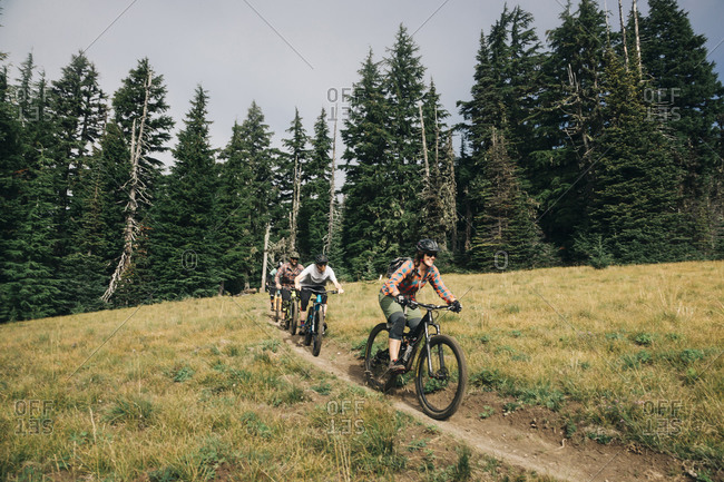 Four bikers ride through a meadow at Mt. Hood, Oregon