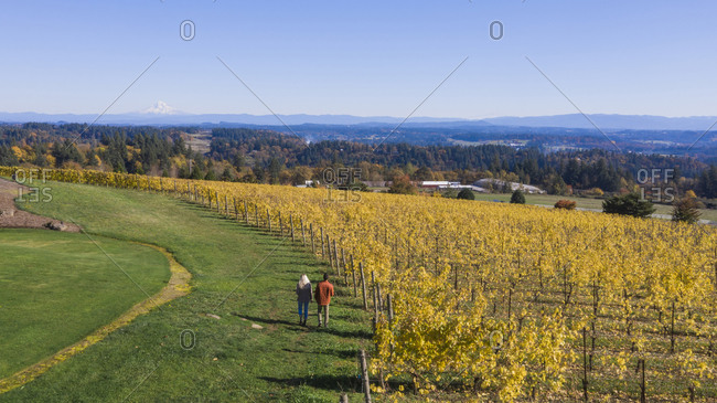 A young couple walks through a vineyard at a winery in Oregon.