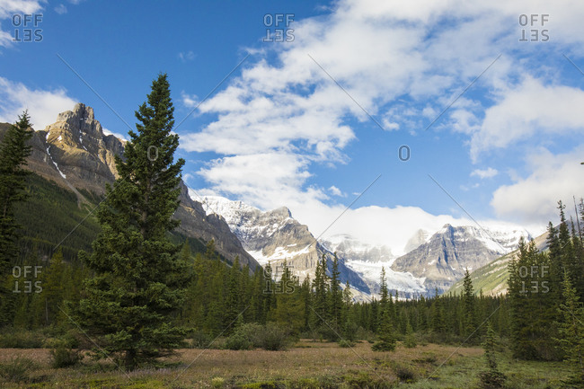 View of Rocky Mountains and sub-alpine forest in Banff National Park.