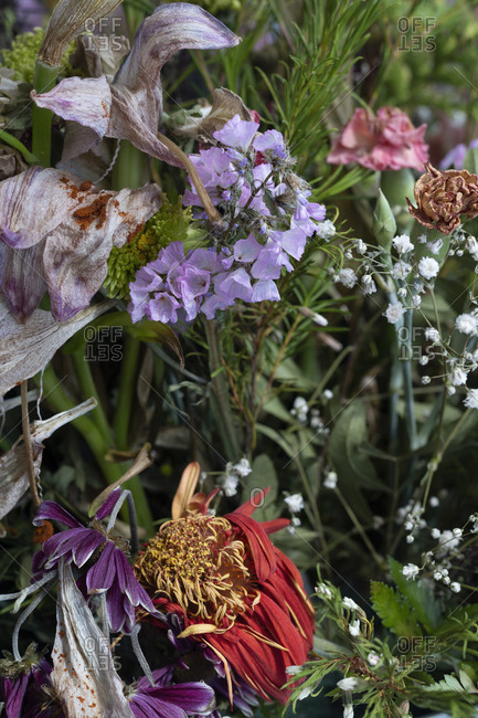 Bouquet with different types of beautiful flowers that are wilting