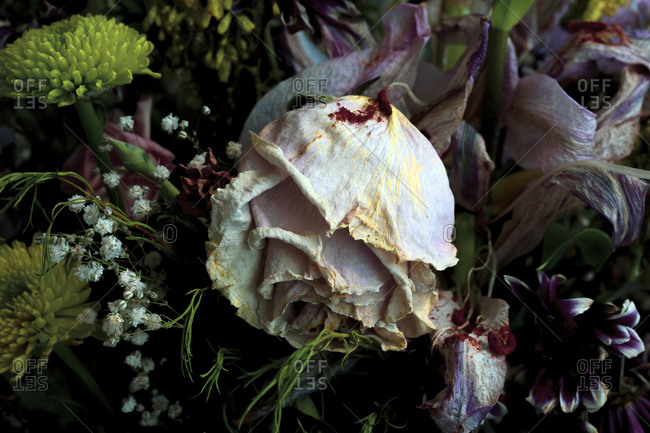 Bouquet of withered flowers with a dried rose in the foreground