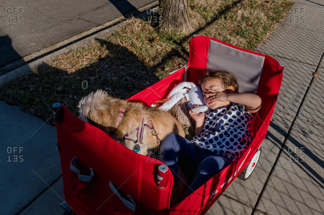Sleepy child riding in a wagon with a small dog