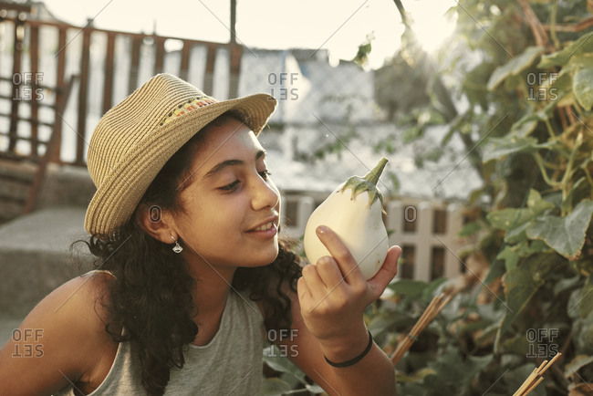 a smiling girl collects a white aubergine in her small garden at home