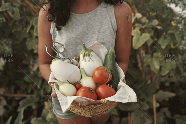Portrait of a girl with a basket of vegetables collected from her garden