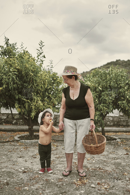 A grandmother and her granddaughter picking fruit in the garden