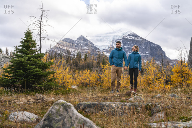 Hiking Couple Holding Hands in Field of Golden Larches During Autumn