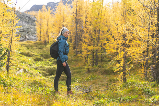 Hiker Posing in Field of Golden Larches at Paradise Valley