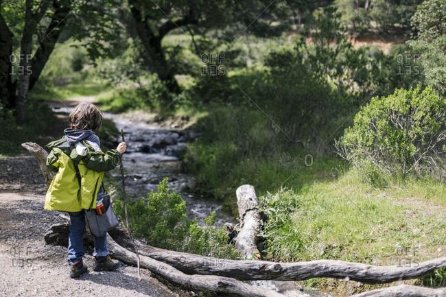 Back kid hiking green raining coat by trunks at recreational park