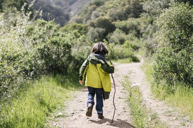 Back view boy walking stick path trail natural park