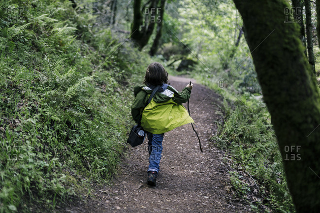 Back view boy walking stick happily on trail path by ferns forest