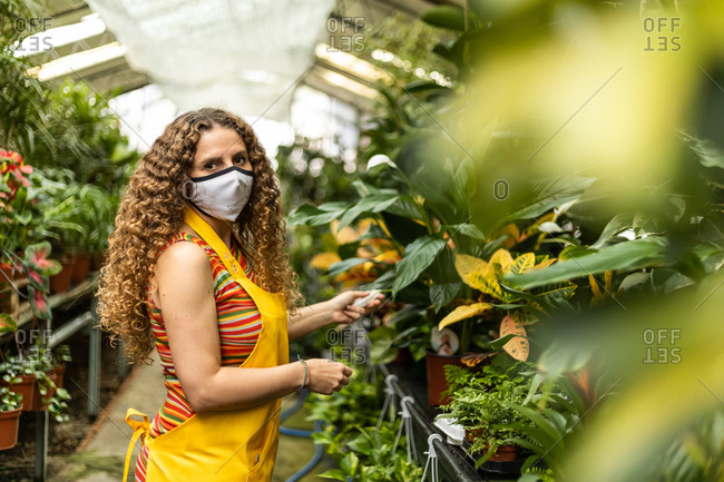 Young blonde adult woman with curly hair and a yellow apron working and checking the plants in her garden shed, wearing a face mask