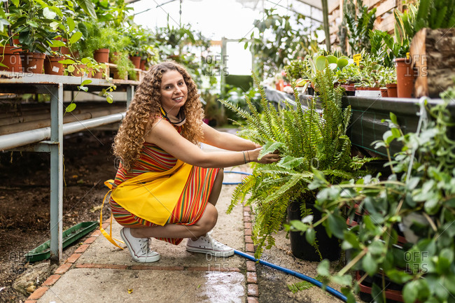 Young blonde adult woman with curly hair and a yellow apron checking the plants in her garden shed, squatting with face mask