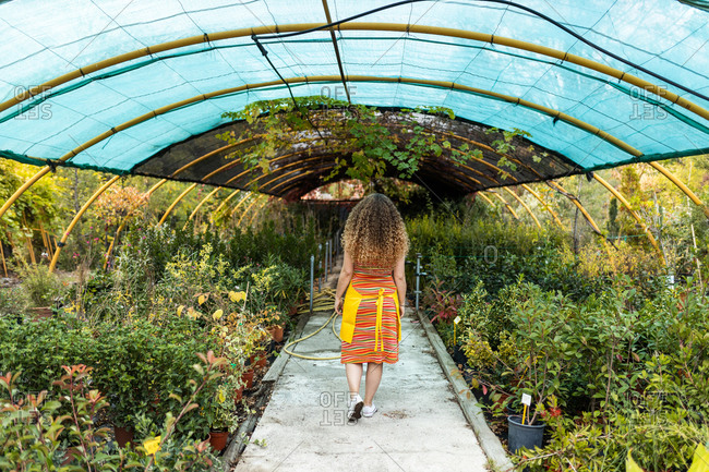 Young blonde adult woman with curly hair and a yellow apron walking back to camera in her garden shed, back view