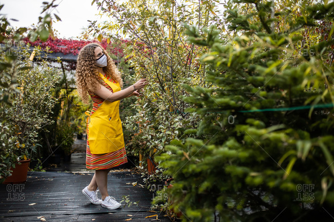 Young blonde adult woman with curly hair and a yellow apron checking the plants and trees in her garden shed with face mask