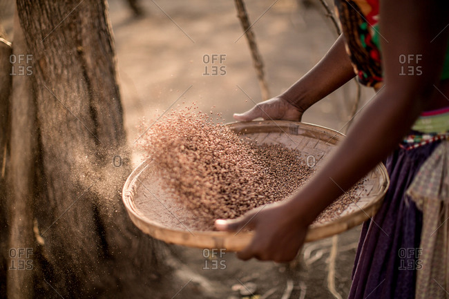 Close-up of a woman sifting grain, Zimbabwe