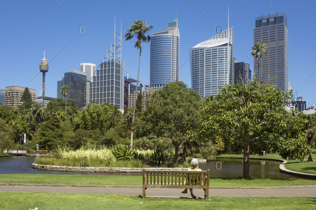 Skyline from Botanical Gardens, Sydney, New South Wales, Australia, Pacific