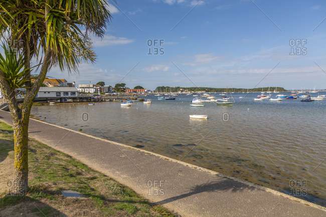 View of Sandbanks and Poole Harbor from Bank Road, Poole, Dorset, England, United Kingdom, Europe