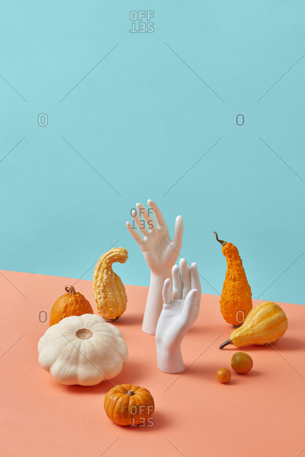 Creative holiday composition from fresh natural organic pumpkins, tomatoes and squash with vertical plastic dummy hands on a duotone pastel background, copy space.
