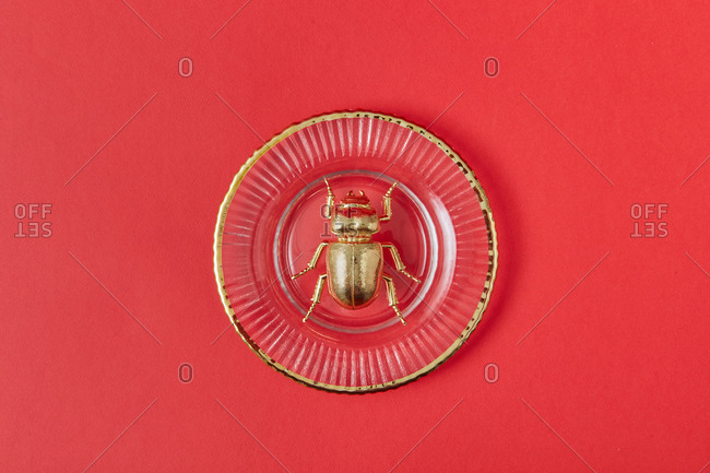 Close-up composition from golden scarab bug made from gold metal on vintage glass plate on a coral background with copy space. Egyptian Scarab. Top view.