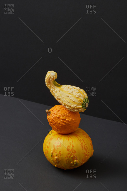 Vegetables balancing stack from homegrown organic pumpkins different shapes and size against duotone dark background, copy space. Vegan concept. Halloween concept.