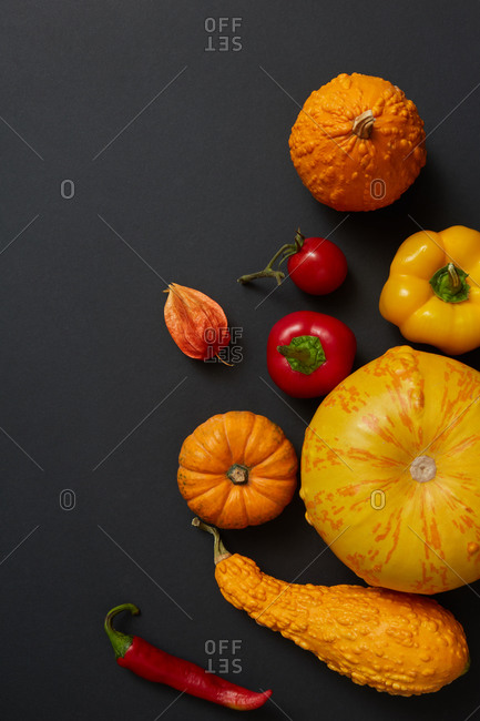 Pattern from homegrown natural organic vegetables pumpkins different shapes, red paprika and chili pepper, tomato on a black background, copy space. Vegetarian healthy food concept. Top view.