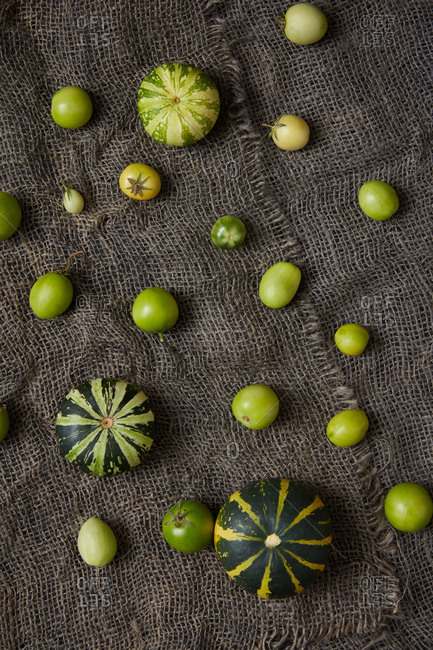 Pattern from homegrown natural organic unripe vegetables pumpkins and tomatoes of green color on canvas textured background. Top view. Vegan healthy food concept.