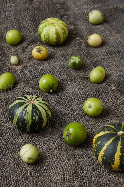 Harvest from freshly picked homegrown unripe organic natural pumpkins and tomatoes of green color on canvas textured background, copy space. Vegetarian healthy food concept.